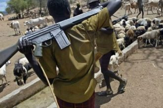 Herdsmen kill three police officers, two others in Taraba