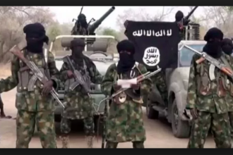 Boko Haram kills abducted Red Cross official in Borno
