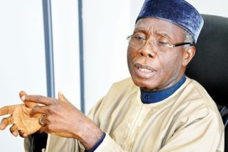 Nigeria may experience shortage of rice in 2019 – Ogbeh