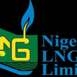 NLNG Seeks $10bn Loan from 10 Banks for Train 7 Expansion