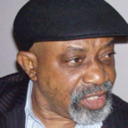 Minimum wage: Employees cannot dictate salaries to their employers - Ngige