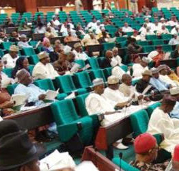 House of Representatives in dire need of funds - Spokesman cries out