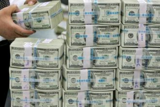 Nigeria's External reserves hit $46 billion - CBN