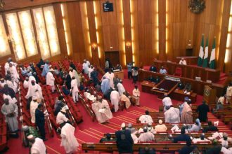 Senate suspends CBN deputy gov, AMCON chair's confirmation