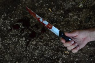 Man stabs two primary schoolchildren to death