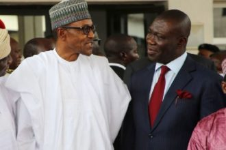 Ekweremadu insists on single term for president, governors, others