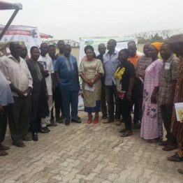 CBN/ABP to disburse loan to 1,500 farmers in Kogi - Foundation