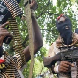 Gunmen kill female foreign tourist, three others in Kaduna