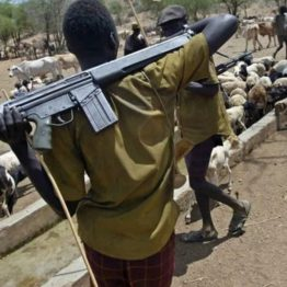 Suspected herdsmen kill 10 traditional rulers in Plateau