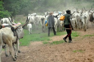 Gunmen in military uniform massacre 29 Fulani herdsmen
