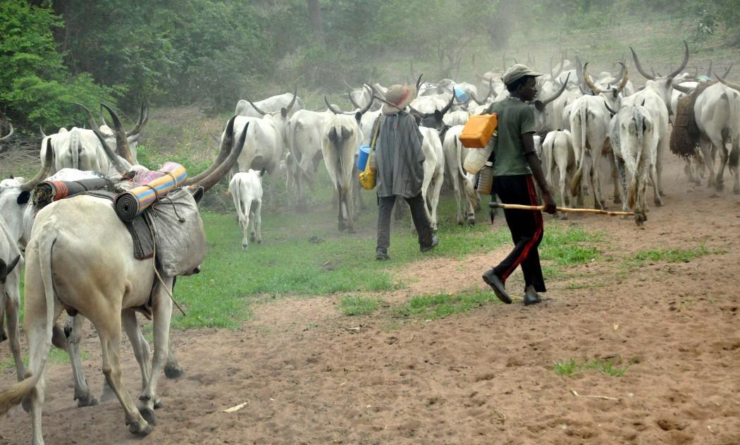 Gunmen in military uniform massacre 29 Fulani herdsmen