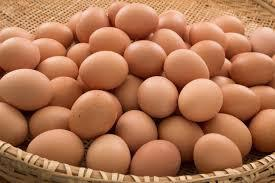Photo of Eggs crucial source of protein, vitamins – nutritionist
