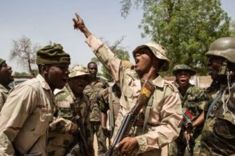 Army rescues medical team, 17 others in Yobe