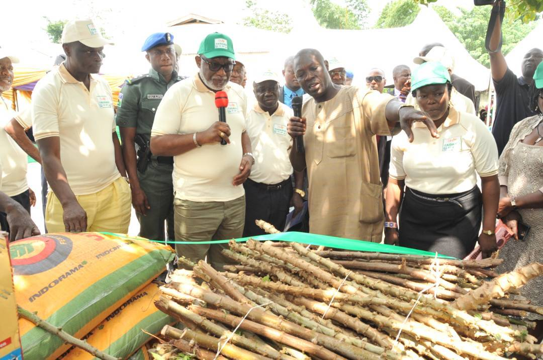 Photo of Akeredolu urges youths to embrace agriculture