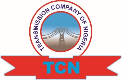 Boko Haram bombs Maiduguri electricity towers - TCN