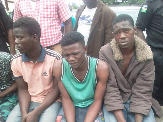 Photo of I joined Black Axe cult to meet Davido – Suspect