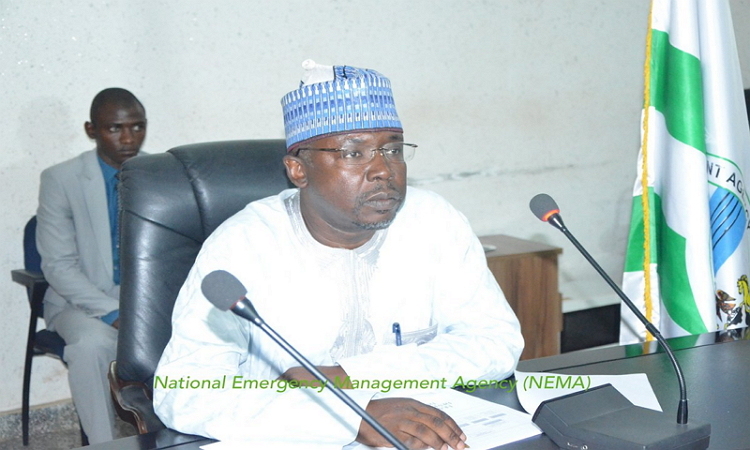 Photo of N33bn emergency fund: Reps panel indicts NEMA DG, recommends sack, further probe