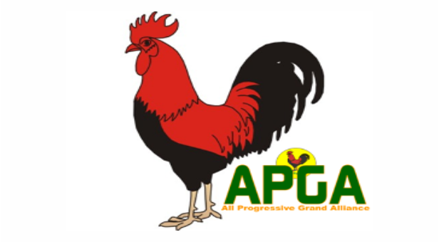 Photo of APGA elects new National Chairman
