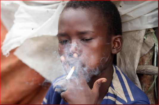 Eight million people die from smoking yearly - WHO