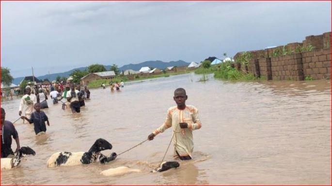Photo of Flood alert: Again, NEMA warns 28 states, 102 LGs