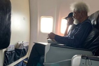 Aircraft seat controversy: My story, by Wole Soyinka