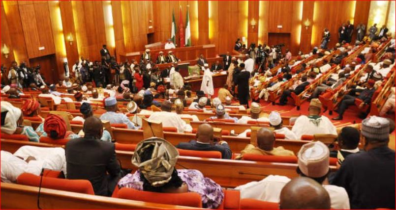 Photo of Senate moves to cut cement prices