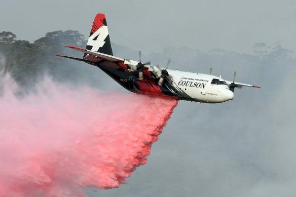 Photo of Three Americans fighting Australian fires die in plane crash