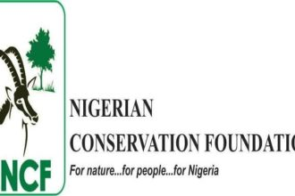 NCF organises free summer camp for students