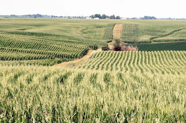Photo of Italy set to invest in Nigeria's agric sector