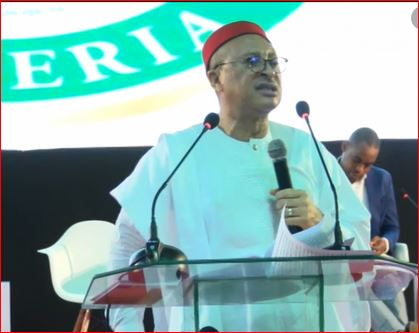 Insecurity: Utomi, Nwosu, others call for national dialogue