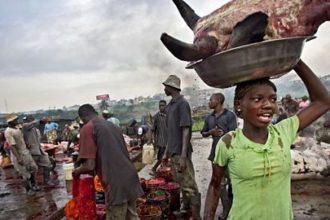 Monkey pox: Lagos Govt. begins surveillance of livestock markets