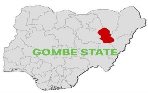 Photo of Gombe LG Poll: APC Wins all 11 Chairmanship, 114 Councillorship Seats