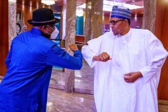 Mali crisis: Again, Buhari meets ex-President Jonathan in Aso Rock
