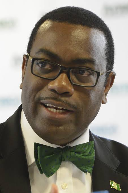 Photo of AfDB president, others task Nigerians in Diaspora on national development