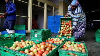 Photo of FAO launches UN's International Year of Fruits and Vegetables 2021