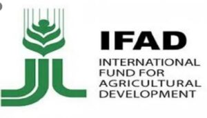 COVID-19: IFAD provides US$900,000 grants to support small-scale producers, rural households in 7 states