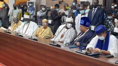 Photo of FG Must Support Cattle Breeding To End Open Grazing, Southwest Governors, Obas