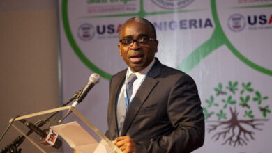 Photo of FG plans to boost export with N50 billion