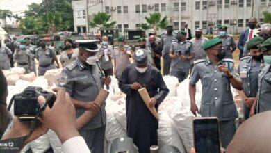 Photo of Photos: Customs intercepts pangolin scales, elephant tusks worth N22.3bn in Lagos